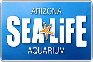 Family Fun at the SEA LIFE Aquarium package information