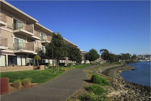 Best Western Plus Bayside Hotel property information