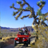 Desert Adventures Eco-Tours & Events attraction information