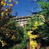The Orchards Inn of Sedona property information