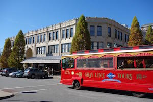 Tour Asheville by Trolley - Gray Line Sightseeing Package