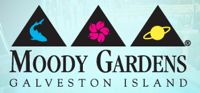 Moody Gardens Photo Gallery