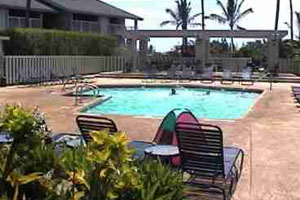 Lovely Sandpiper Village - One Bedroom Condo 228B Photo Gallery