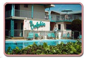 Florida Dolphin Motel Photo Gallery