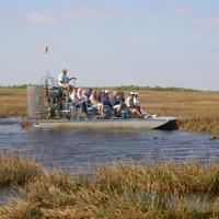 Everglades Day Safari Photo Gallery