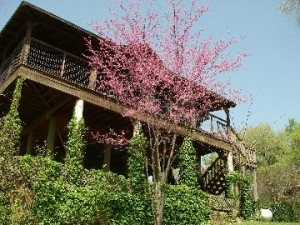 Bastrop River House Photo Gallery