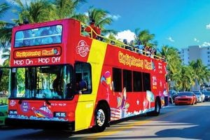 City Sightseeing - Miami